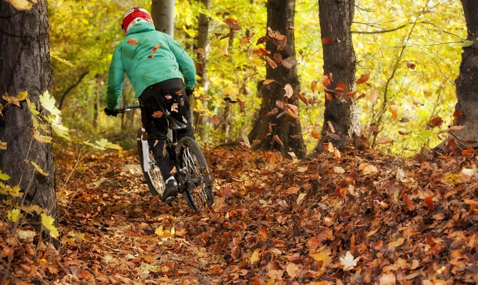 Biker rides through autumn leaves.